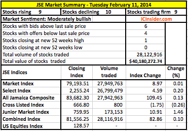 JSEIndicesFeb11