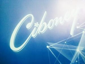 Cib -11-15