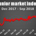 136 points Junior Market drop – Friday